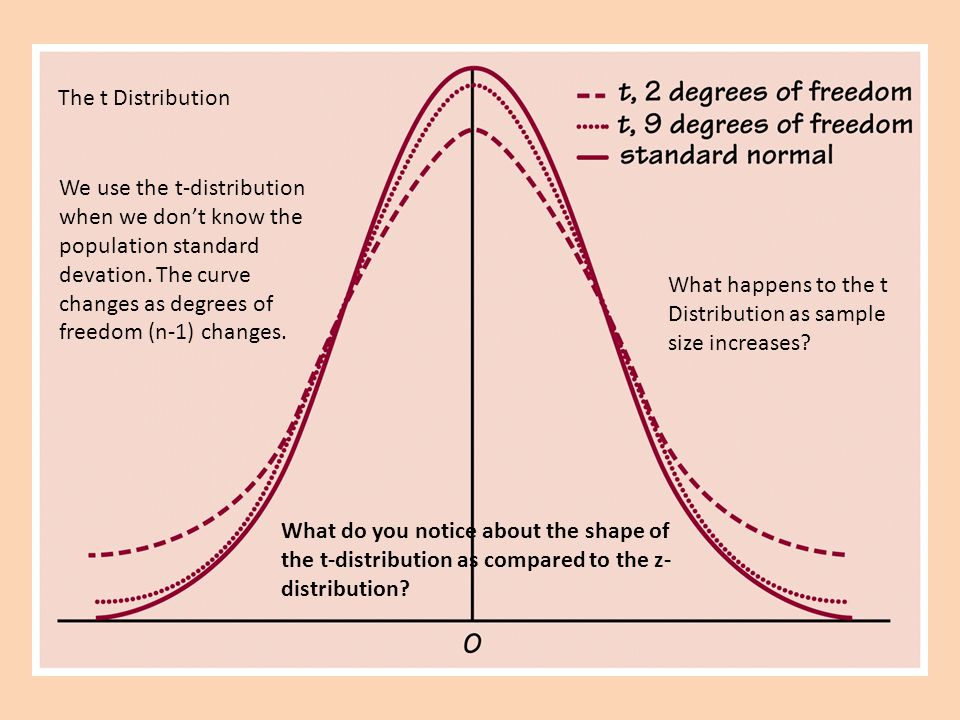 The t Distribution What happens to the t Distribution as sample size increases.