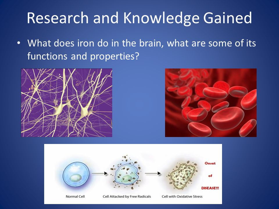Research and Knowledge Gained What does iron do in the brain, what are some of its functions and properties?