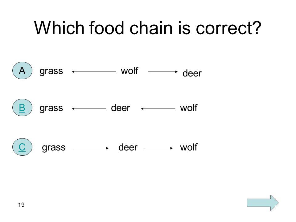 19 Which food chain is correct? grasswolf deer grassdeerwolf grassdeerwolf C B A