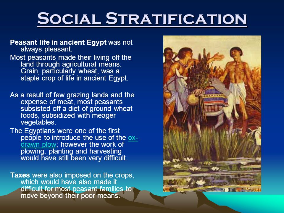 Social Stratification Peasant life in ancient Egypt was not always pleasant. Most peasants made their living off the land through agricultural means.