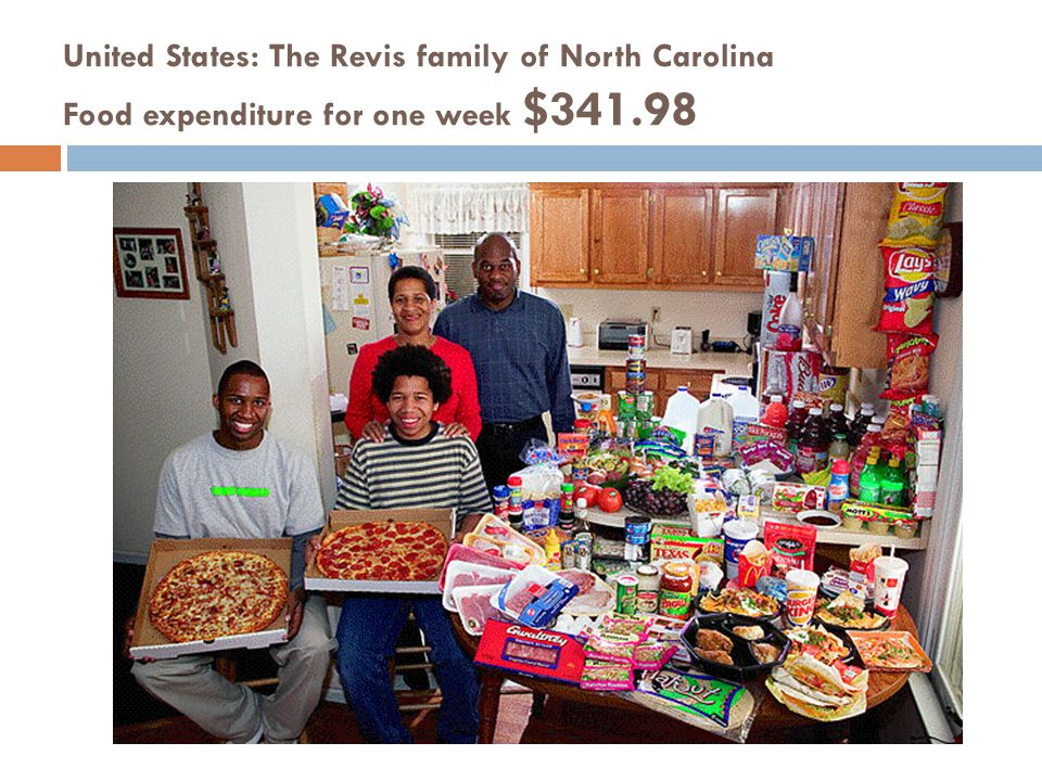 United States: The Revis family of North Carolina Food expenditure for one week $341.98
