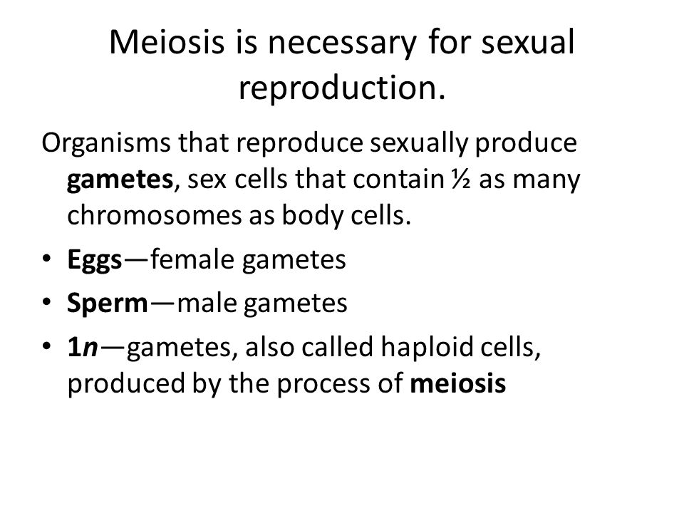 Meiosis is necessary for sexual reproduction. Organisms that reproduce sexually produce gametes, sex cells that contain ½ as many chromosomes as body