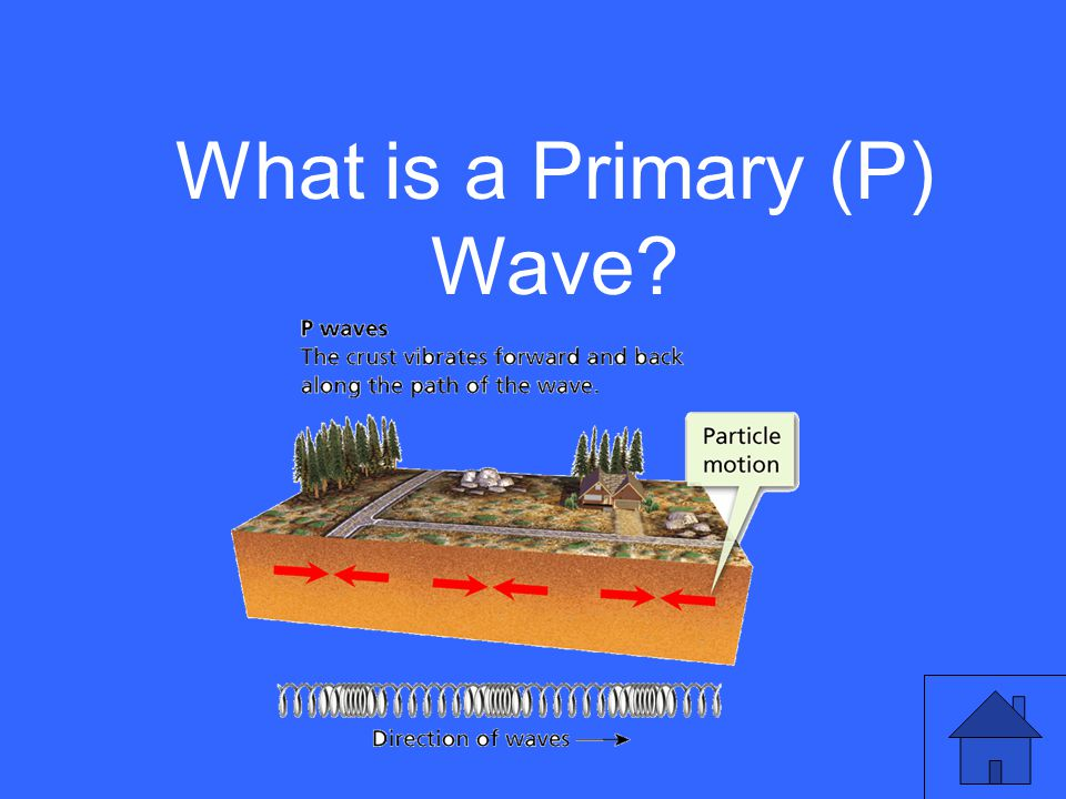 What is a Primary (P) Wave?