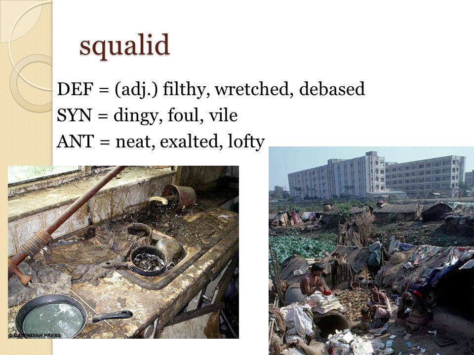 squalid DEF = (adj.) filthy, wretched, debased SYN = dingy, foul, vile ANT = neat, exalted, lofty