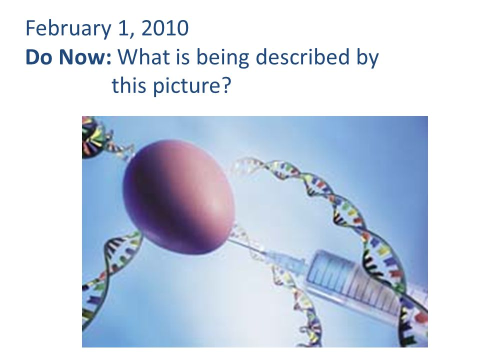 February 1, 2010 Do Now: What is being described by this picture?