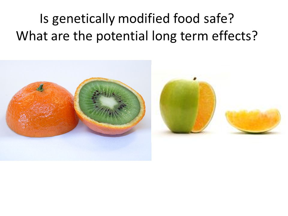 Is genetically modified food safe? What are the potential long term effects?