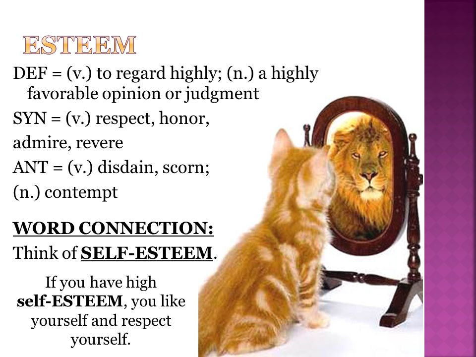 DEF = (v.) to regard highly; (n.) a highly favorable opinion or judgment SYN = (v.) respect, honor, admire, revere ANT = (v.) disdain, scorn; (n.) contempt WORD CONNECTION: Think of SELF-ESTEEM.