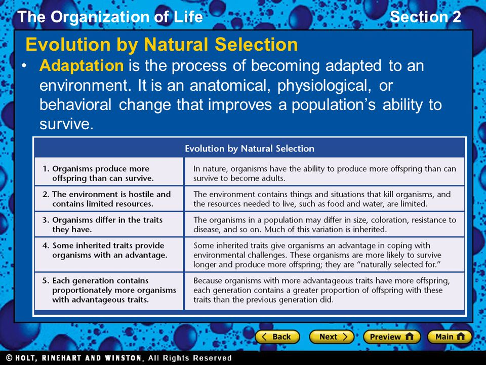 The Organization of LifeSection 2 Evolution by Natural Selection Adaptation is the process of becoming adapted to an environment. It is an anatomical,