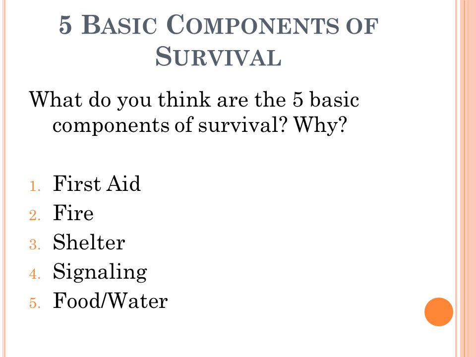 5 B ASIC C OMPONENTS OF S URVIVAL What do you think are the 5 basic components of survival? Why? 1. First Aid 2. Fire 3. Shelter 4. Signaling 5. Food/