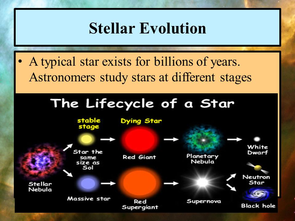Stellar Evolution A typical star exists for billions of years. Astronomers study stars at different stages