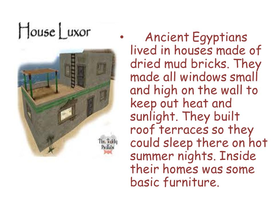 Ancient Egyptians lived in houses made of dried mud bricks.