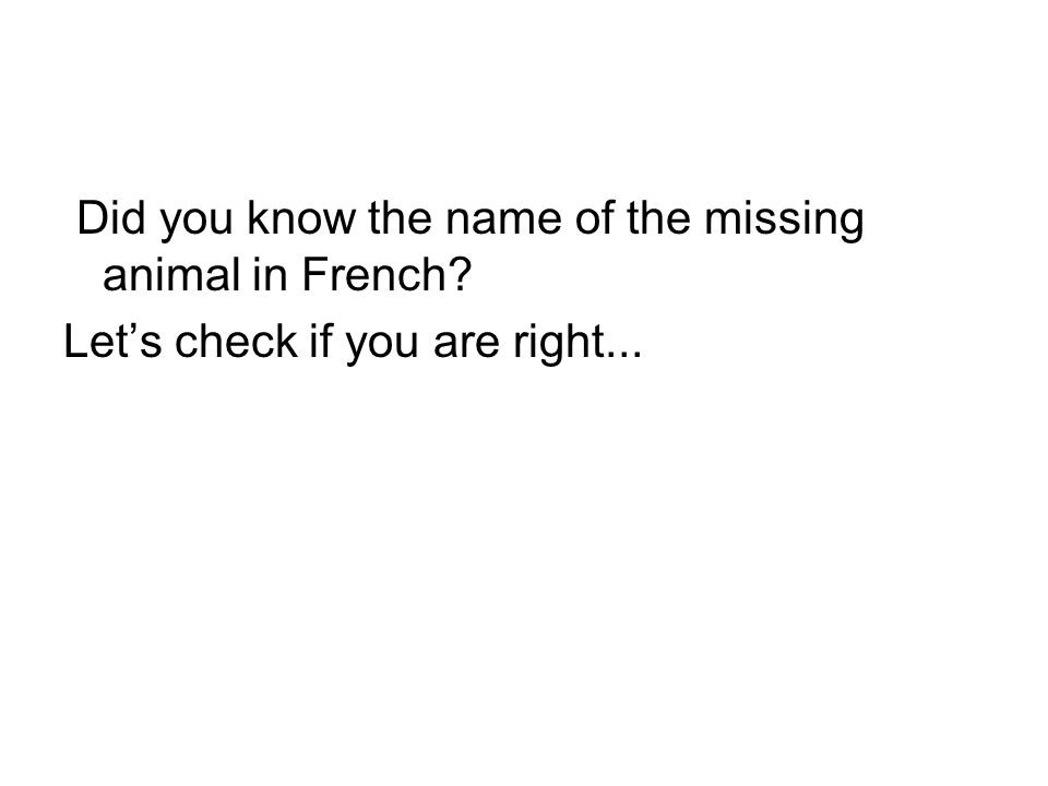Did you know the name of the missing animal in French? Let's check if you are right...
