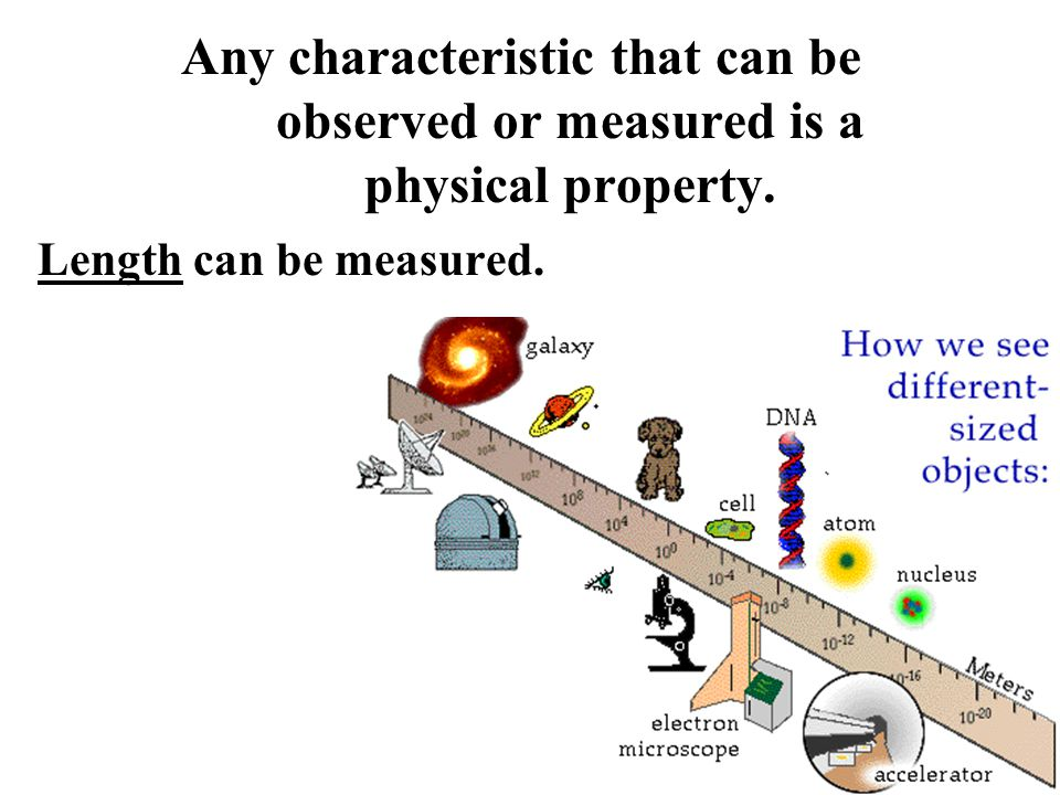 Any characteristic that can be observed or measured is a physical property. Length can be measured.