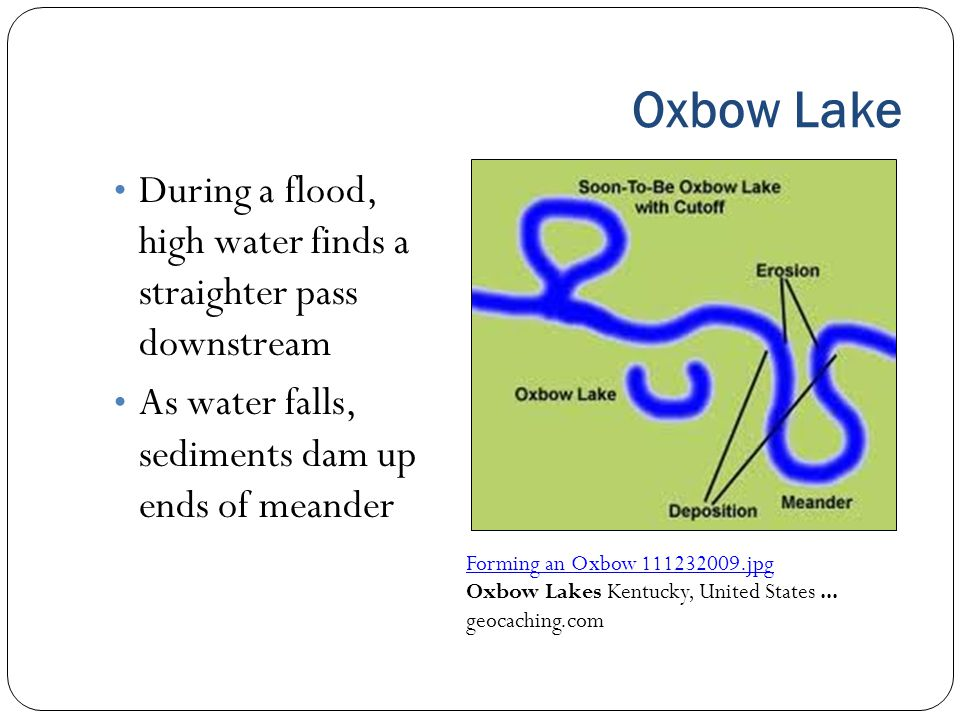 Oxbow Lake During a flood, high water finds a straighter pass downstream As water falls, sediments dam up ends of meander Forming an Oxbow 111232009.j