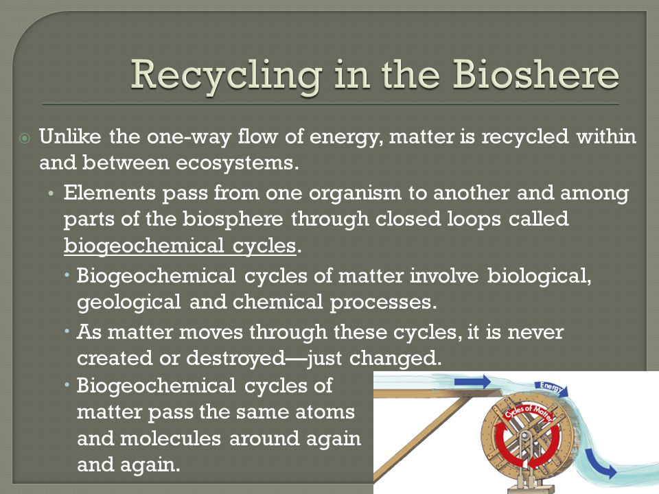  Biological processes consist of any and all activities performed by living organisms.