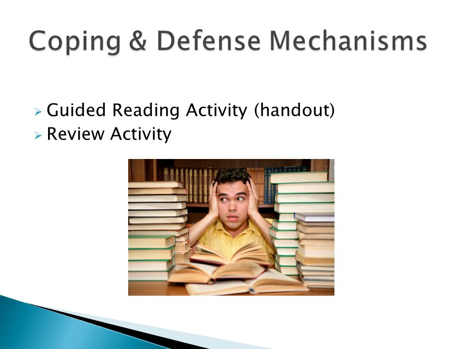  Guided Reading Activity (handout)  Review Activity