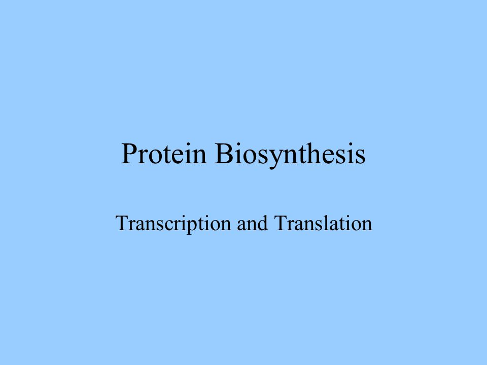 Protein Biosynthesis Transcription and Translation