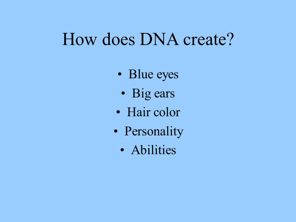 How does DNA create? Blue eyes Big ears Hair color Personality Abilities