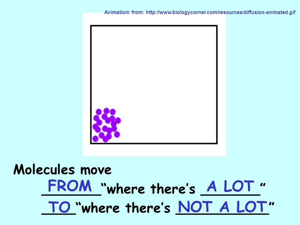 Exocytosis http://www.emc.maricopa.edu/faculty/farabee/BIOBK/BioBooktransp.html