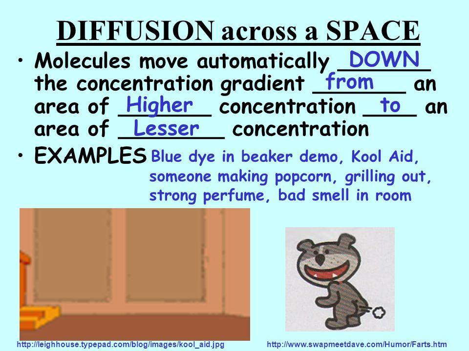 Facilitated Diffusion _______ proteins help diffusion go faster Carrier MOVIE DIFFUSION ACROSS THE MEMBRANE (FACILITATED DIFFUSION)