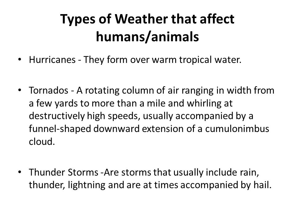 Types of Weather that affect humans/animals Hurricanes - They form over warm tropical water. Tornados - A rotating column of air ranging in width from