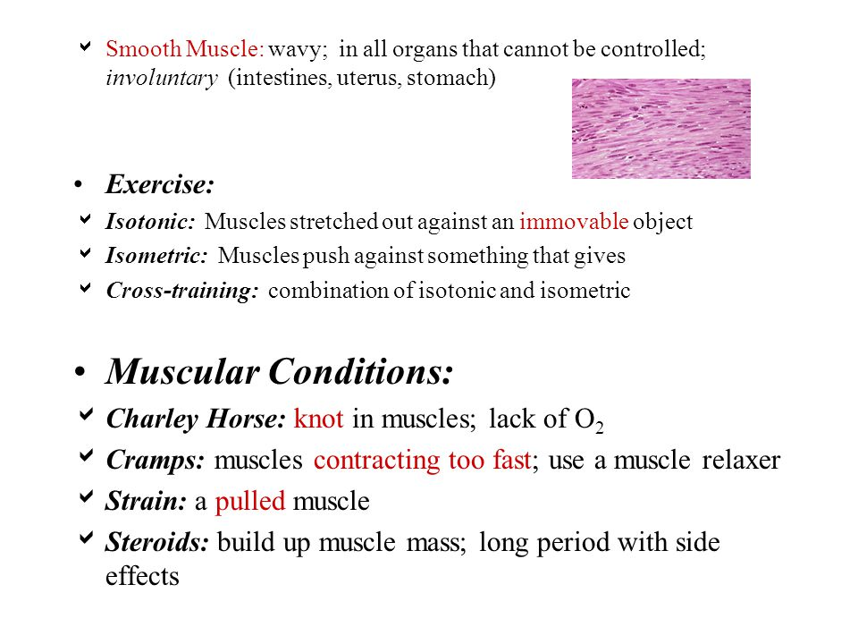  Smooth Muscle: wavy; in all organs that cannot be controlled; involuntary (intestines, uterus, stomach) Exercise:  Isotonic: Muscles stretched out