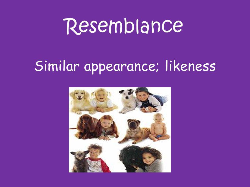 Resemblance Similar appearance; likeness