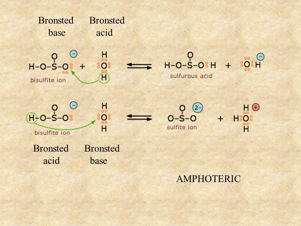 Bronsted base acid Bronsted acid base AMPHOTERIC
