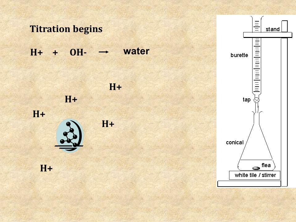 H+ OH- Titration begins + water