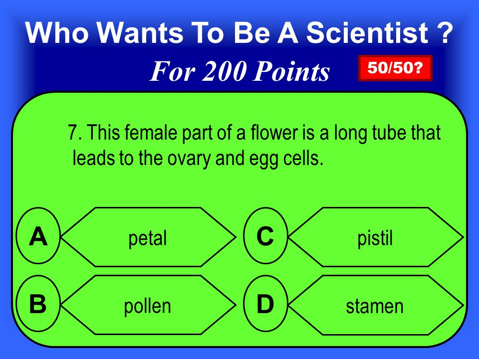 Answer 6. is stamen B Add 100 points for a correct answer