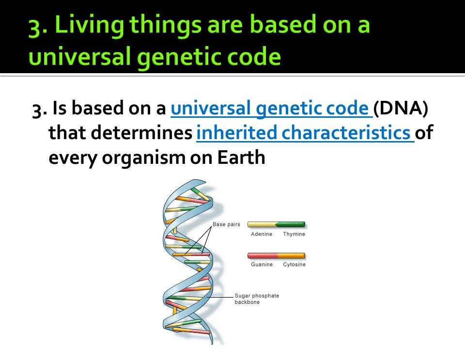 3. Is based on a universal genetic code (DNA) that determines inherited characteristics of every organism on Earth
