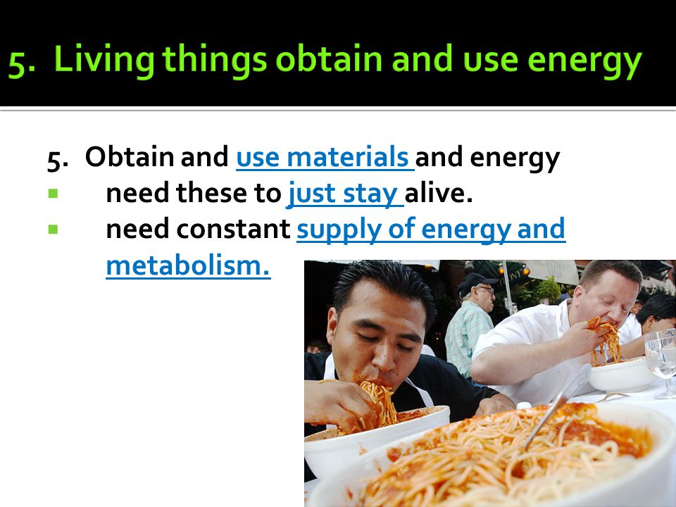 5.Obtain and use materials and energy  need these to just stay alive.  need constant supply of energy and metabolism.