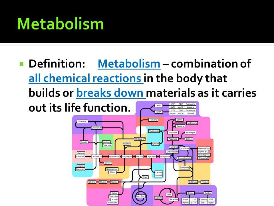  Definition:Metabolism – combination of all chemical reactions in the body that builds or breaks down materials as it carries out its life function.