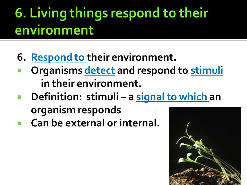 7.Maintain a stable internal environment.  Process to do this is known as homeostasis.