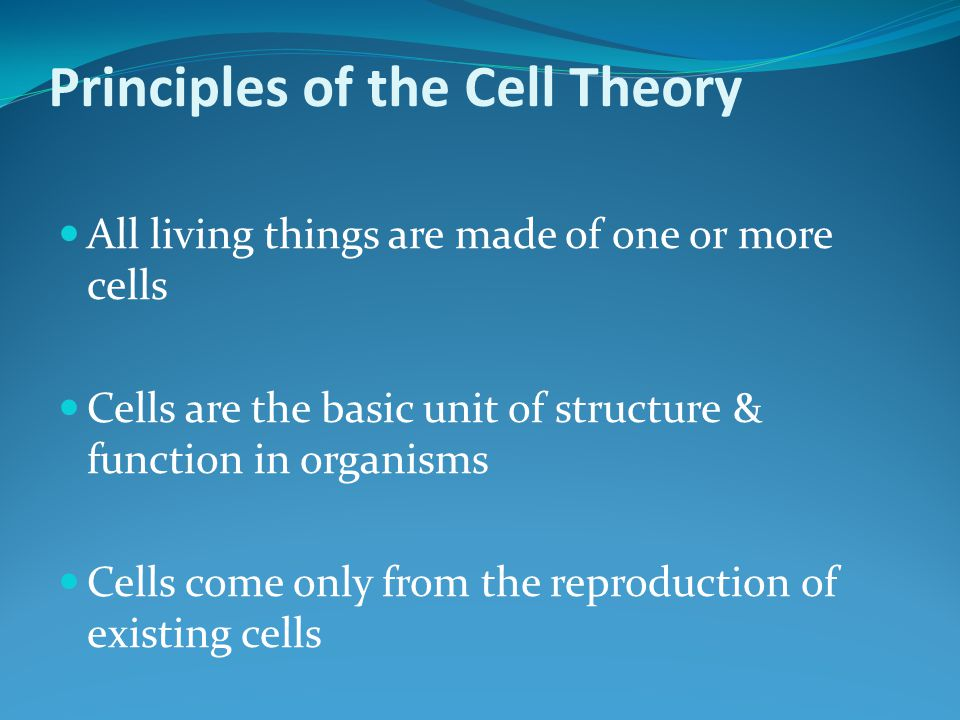Principles of the Cell Theory All living things are made of one or more cells Cells are the basic unit of structure & function in organisms Cells come