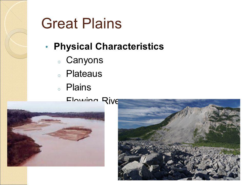 Great Plains Vegetation Some trees Grasslands Flowers