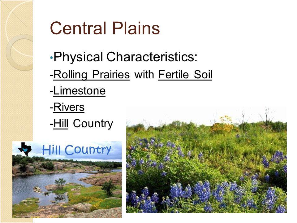 Central Plains Vegetation: -Larger Trees -Lush Tall Grasses