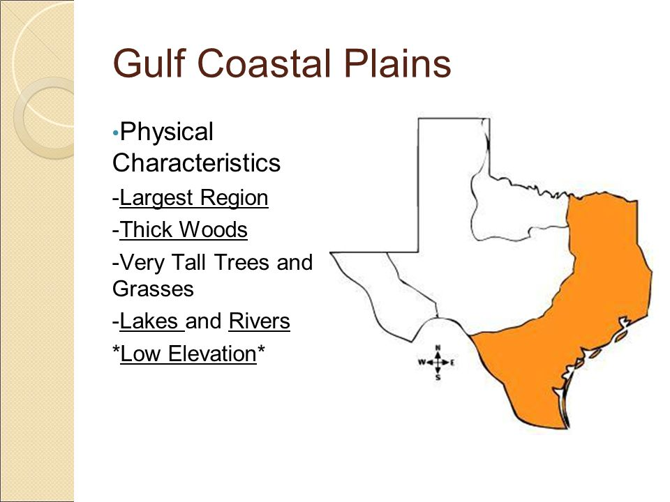 Gulf Coastal Plains Vegetation -Varies greatly because most plants thrive