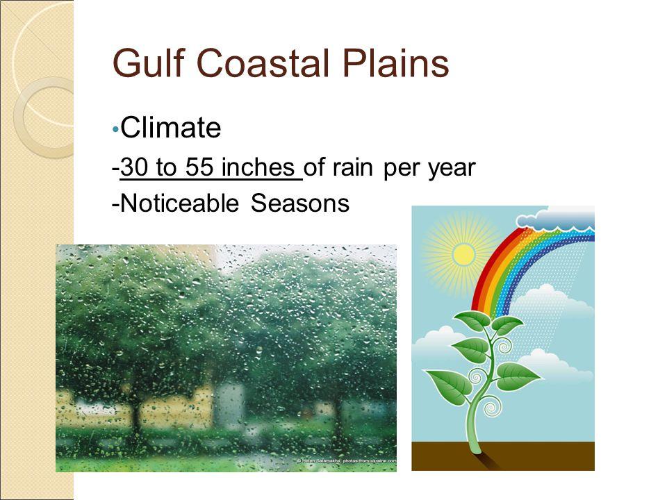 Gulf Coastal Plains Human Characteristics -Largest Cities (Houston, Dallas, Austin, Brownsville) -Very Large Populations