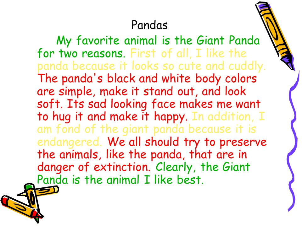 Favourite animal essay