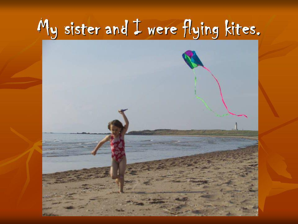 My sister and I were flying kites.