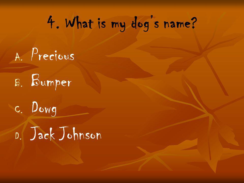 4. What is my dog's name A. A. Precious B. B. Bumper C. C. Dowg D. D. Jack Johnson