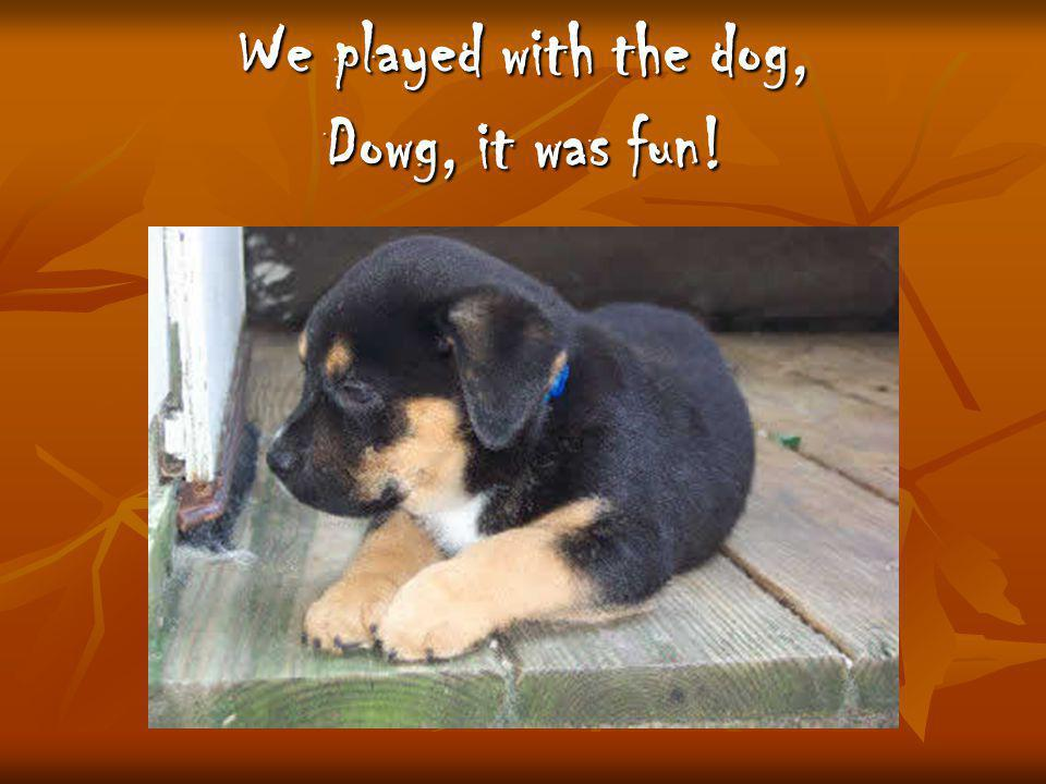 We played with the dog, Dowg, it was fun!
