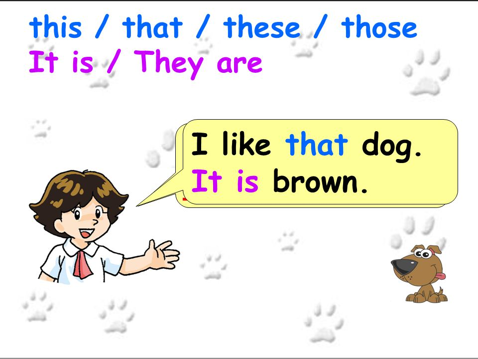 I like ___ dogs.______ brown. this / that / these / those It is / They are I like these dogs.