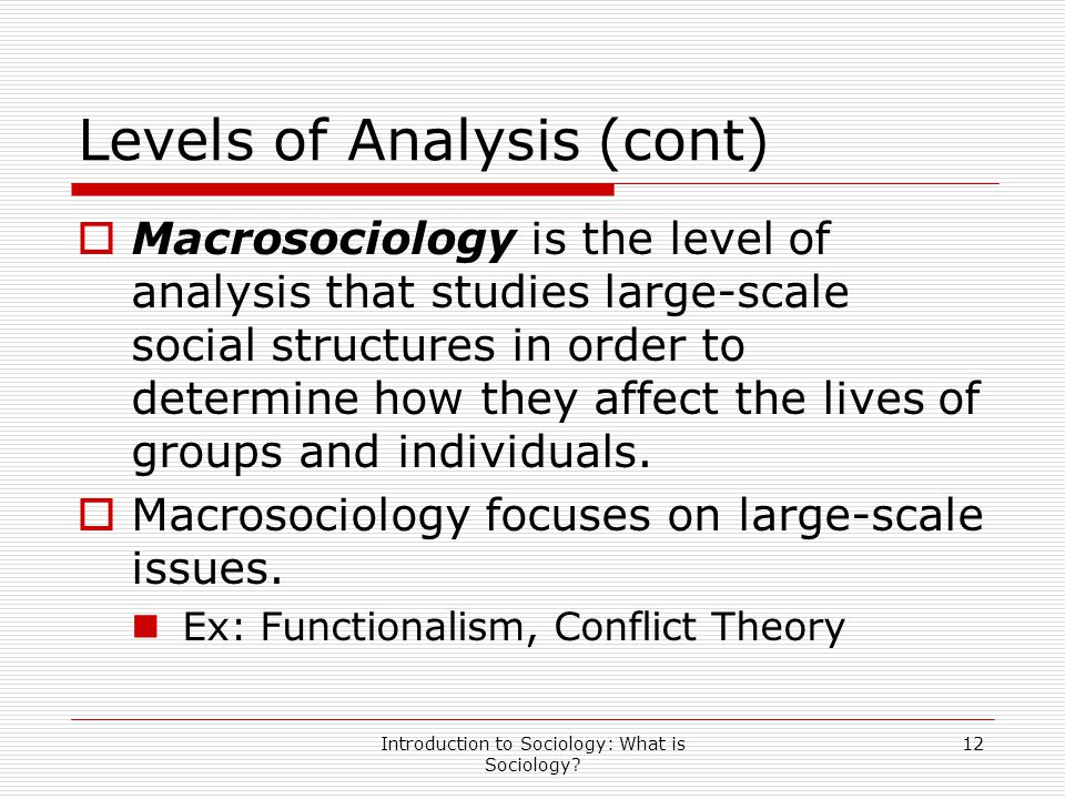 Introduction to Sociology: What is Sociology? 12 Levels of Analysis (cont)  Macrosociology is the level of analysis that studies large-scale social s