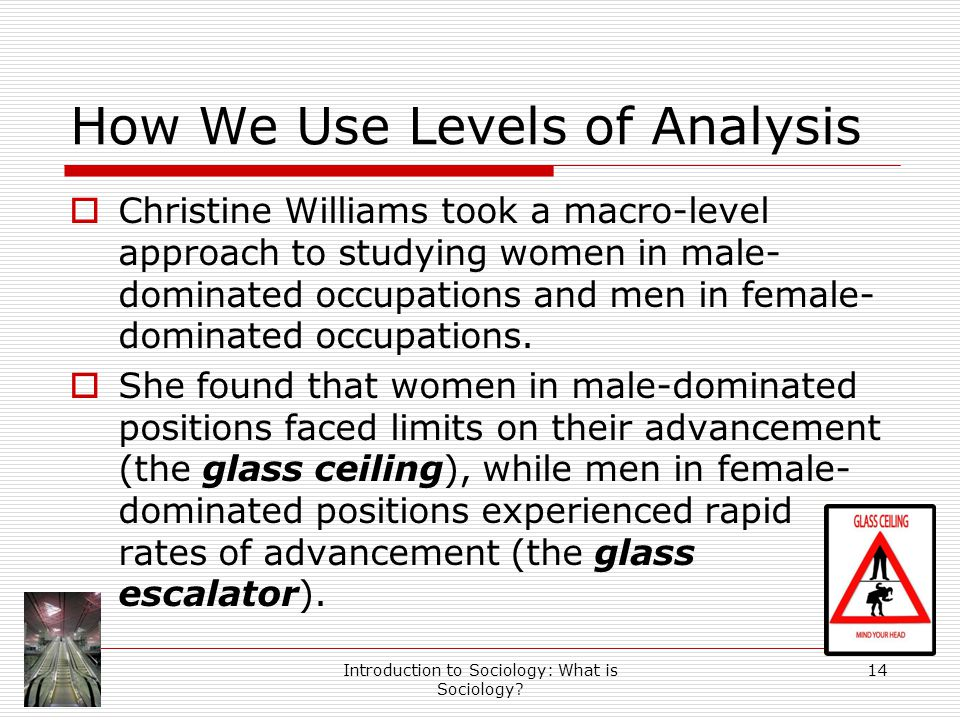 Introduction to Sociology: What is Sociology? 14 How We Use Levels of Analysis  Christine Williams took a macro-level approach to studying women in m