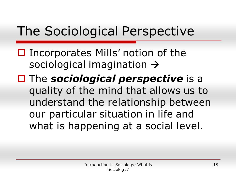 Introduction to Sociology: What is Sociology? 18 The Sociological Perspective  Incorporates Mills' notion of the sociological imagination   The soc