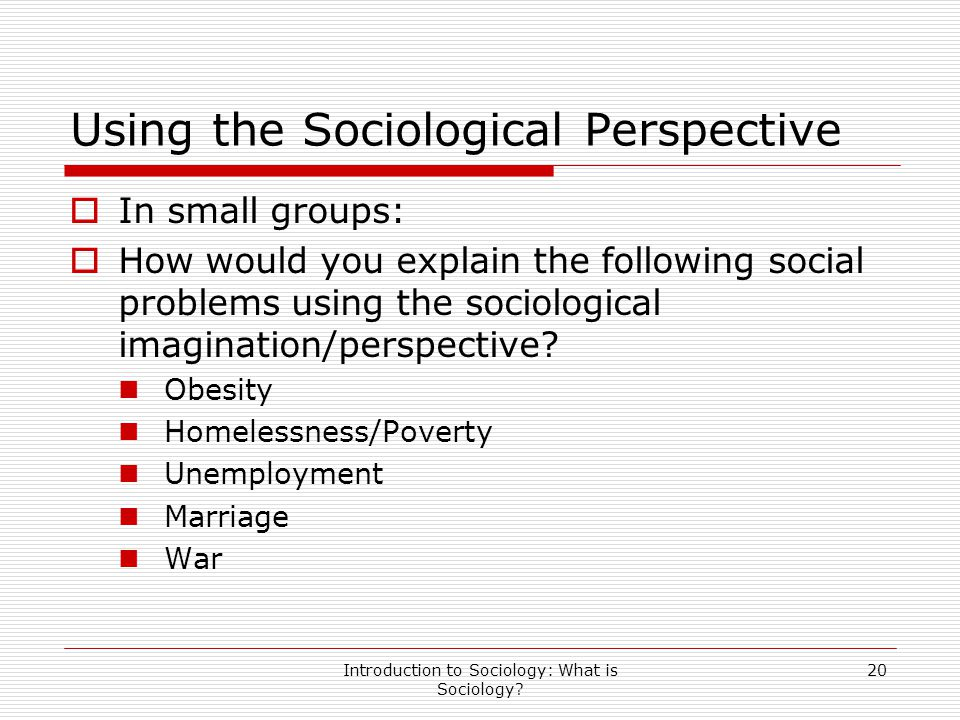 Introduction to Sociology: What is Sociology? 20 Using the Sociological Perspective  In small groups:  How would you explain the following social pr
