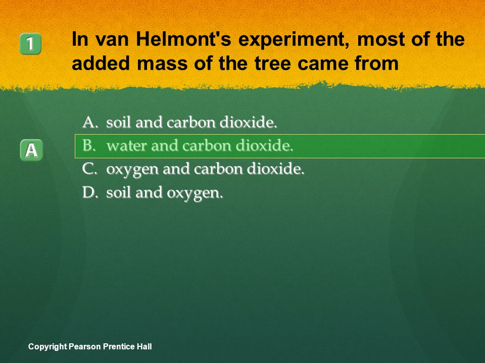 A.soil and carbon dioxide. B.water and carbon dioxide. C.oxygen and carbon dioxide. D.soil and oxygen. Copyright Pearson Prentice Hall In van Helmont'