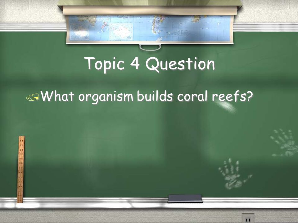 Topic 9 Question / Plankton are microscopic plants with a very important job.